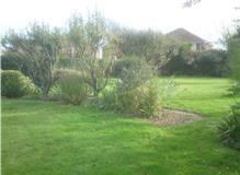 Cutting long grass and keeping garden under control