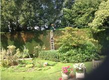 Green Garden Services