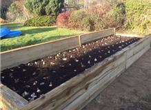 Finished Raised Bed