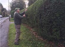 It's the only way to deal with any hedges always look after the hidden problems we always go further