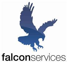 Falcon Property Services 2.0 Ltd