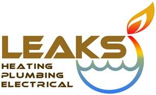Leaks Ltd