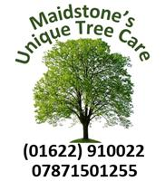 Maidstone's Unique Tree Care