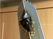 The dangers of halogen lights burning the transformer above it