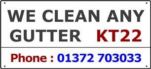 We Clean Any Gutter
