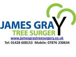 James Gray Tree Surgery