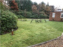 Romsey & Chandlers Ford Tree & Landscape Services