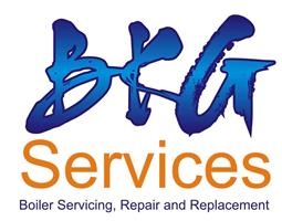 BKG Services