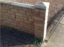 Carty Property Maintenance Ltd