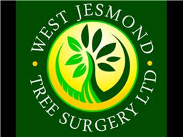 West Jesmond Tree Surgery Ltd