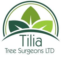 Tilia Tree Surgeons Ltd