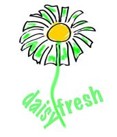 Daisy Fresh Carpet & Upholstery Cleaning