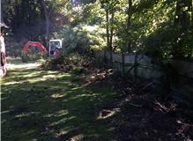 Removal of hedging at Medmenham,Marlow,Henley