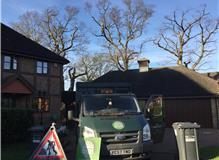 Holder Tree Services Ltd