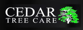 Cedar Tree Care Ltd