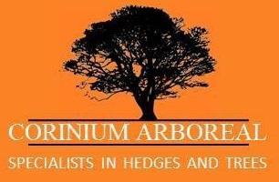 Corinium Arb