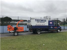 Treewise Tree Services