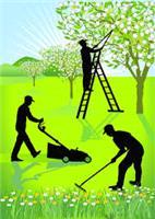 JS Garden Services & Waste Removals