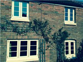 Ecologic Windows