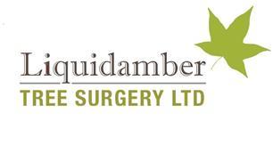 Liquidamber Tree Surgery Limited