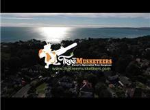 The Tree Musketeers Dorset Ltd