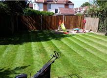 grass cuts