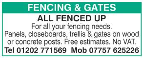 All Fenced Up