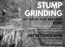 Get rid of that annoying stump