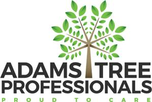 AdamsTree Professionals