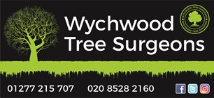 Wychwood Tree Surgeons