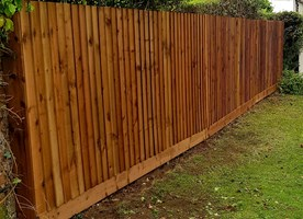 Pro Fence and Tree Services