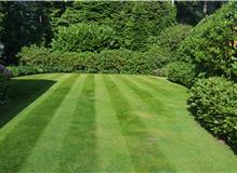 Work undertaken by Premier Lawns based in Camberley, Hampshire