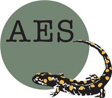 AES National Ltd