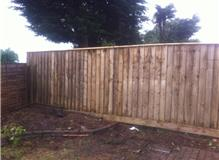 coldharbour fencing and landscaping
