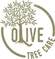 Olive Tree Surgery LLP