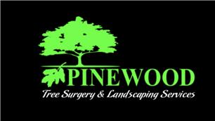Pinewood Tree and Landscapes