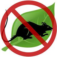 Eco Pest Services
