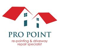 Pro Point Repointing Specialist