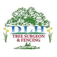 DLH Tree Surgeon