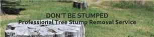 Don't Be Stumped