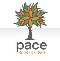 Pace Tree Services