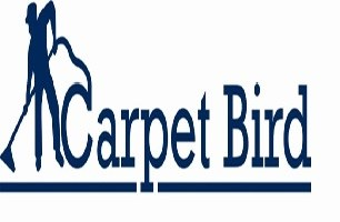 Carpet Bird