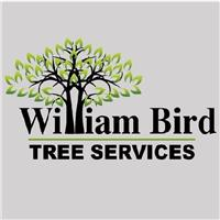 William Bird Tree Services