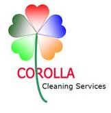Corolla Window & Gutter Cleaning  Services