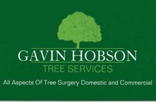 Gavin Hobson Tree Services