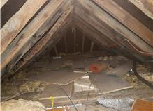 Wood worm treatment in loft space