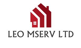 Leo Mserv Ltd