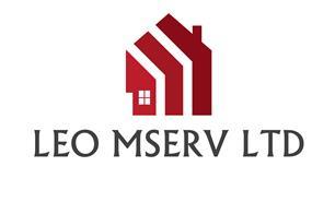 Leo Mserv Ltd