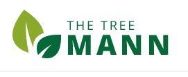 Thetreemann