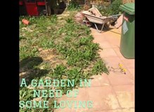 Garden renovation & AstroTurf